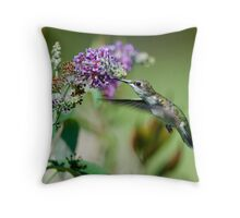 Hungry hummer - hummingbird at butterfly bush 1 Throw Pillow