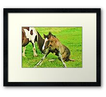 Oh no not again! Framed Print