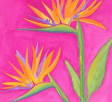 Birds of Paradise by Angie B
