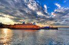 Staten Island Ferry by Yelena Rozov