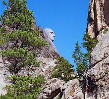 Mt. Rushmore- George Washington by StonePics