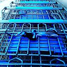 Walmart has so many carriages.  by DearMsWildOne