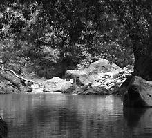 Poza de Rio, River by Guy C. André Tschiderer