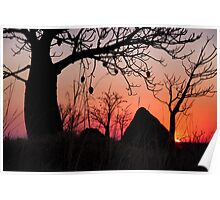 Boab and termite mound sunset Poster