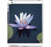 Longwood Gardens - Spring Series 38 iPad Case/Skin