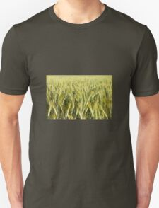 Spring green cereal plants T-Shirt
