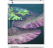 Longwood Gardens - Spring Series 40 iPad Case/Skin