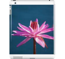 Longwood Gardens - Spring Series 41 iPad Case/Skin