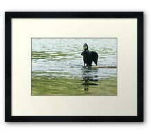 Guess my diving suit is leaking! Framed Print