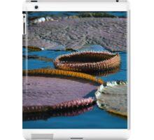 Longwood Gardens - Spring Series 42 iPad Case/Skin