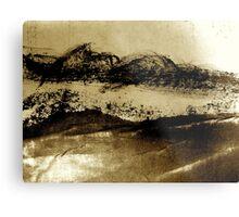 desert brush.... Metal Print