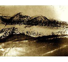 desert brush.... Photographic Print