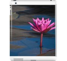 Longwood Gardens - Spring Series 43 iPad Case/Skin
