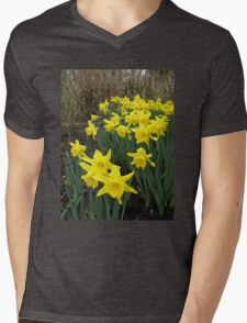 Daffodils in Woodland Mens V-Neck T-Shirt