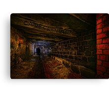 Sly Cured Pig Goes Underground Canvas Print