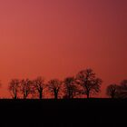 Red Sunset Over Moira by danbullock