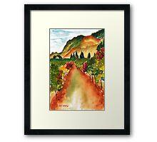 September Vineyard Framed Print
