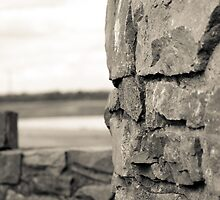beyond the wall by marajade