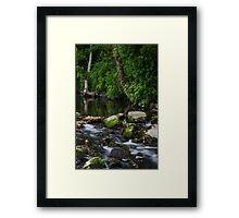 River Tolka, National Botanic Gardens, Dublin Framed Print