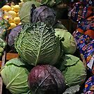 cabbages - by Tessa by Janine Paris
