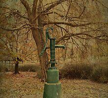 Water Fountain by Elaine Teague