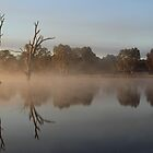 Tranquility - Lake *Nillahcootie.* by Barbara  Glover