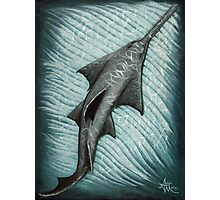 Sawfish Photographic Print