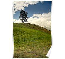 Tree Above Keld Poster
