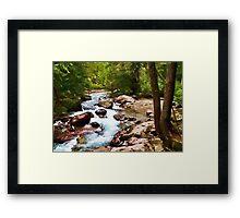 Mountain Trail Stream Framed Print