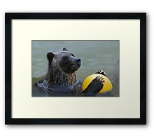 Play With Me?  Framed Print