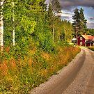 Cottage by ilpo laurila