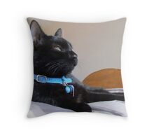 Beautiful Findley Pops Throw Pillow