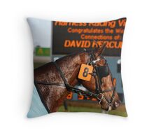 David Hercules Throw Pillow