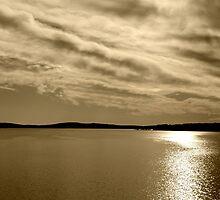 Serene Waters at Jordan Lake by Kelly Nowak
