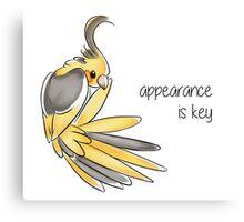 Appearance is Key Canvas Print