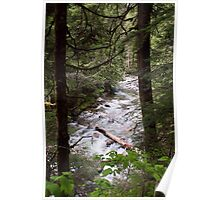 Denny Creek, Washington Poster