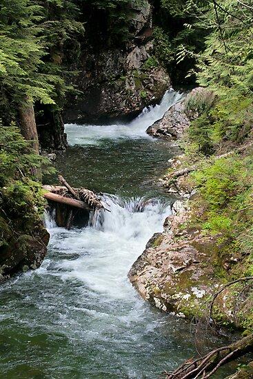 Franklin Falls, Denny Creek, Snoqualmie Forest by Stacey Lynn Payne