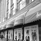 harrods in london by Alice Thorpe