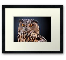 Eagle Owl Portrait Framed Print