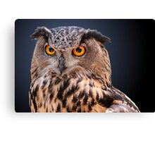 Eagle Owl Portrait Canvas Print