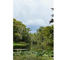 Silver River Photographic Print
