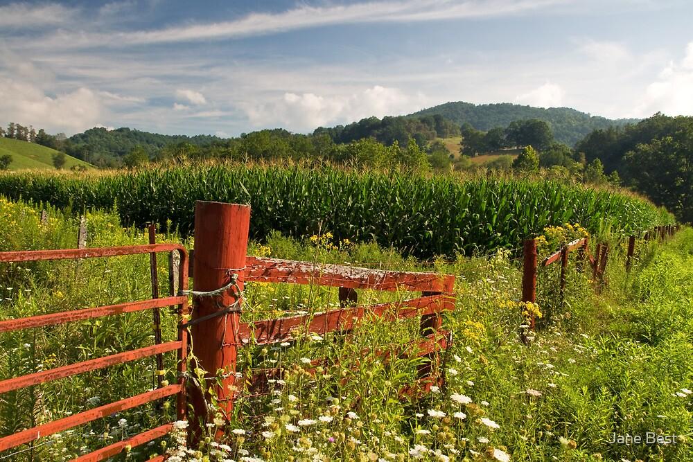 Mountain Farm by Jane Best