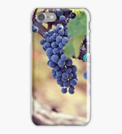 blue grape iPhone Case/Skin