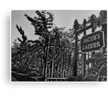 Jacob's Ladder (mono) Metal Print