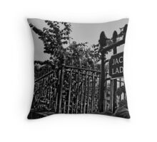 Jacob's Ladder (mono) Throw Pillow