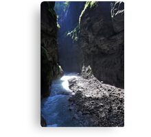Light in the Canyon Canvas Print