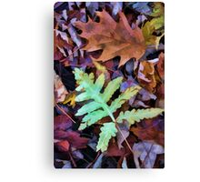 Leaves - Color and Pattern Canvas Print