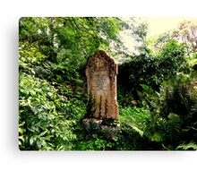 Old graveyard Canvas Print