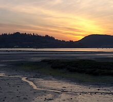 Golden sunset - Inlet park, Port Moody by shivanand