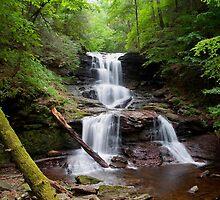 Split Summer Flow Over Tuscarora's Ledge by Gene Walls